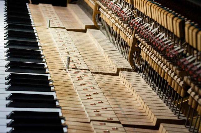 Профессиональная настройка фортепиано и роялей. Настройщик пианино.