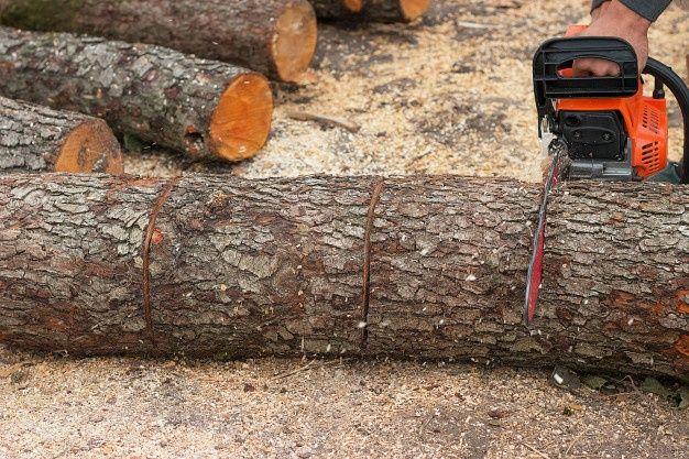 Пилим, рубим дрова.