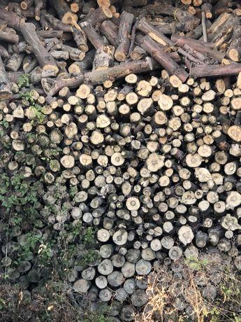 Drewno opałowe kominkowe z jabłoni w skrzyniach