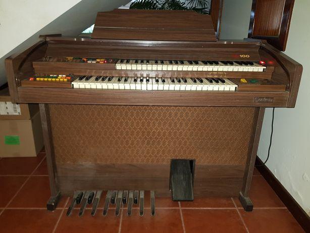 Órgão Eletrônico Godwin CD100