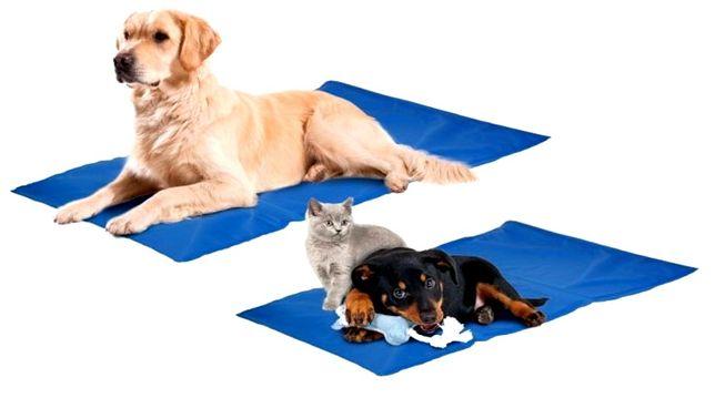 Żelowa Mata Chłodząca 52x52cm dla psa ras małych i średnich Legowisko