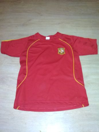 Koszulka fabregas Hiszpania