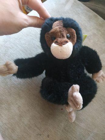 Новая мягкая игрушка, с биркой. Мартышка, шампанзе, обезьянка,