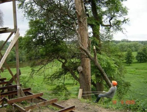 Спил, корчевание деревьев. Уборка участка, территории. Вывоз мусора