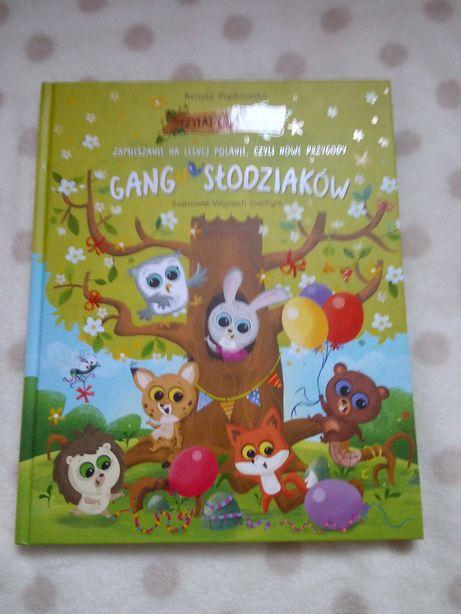 """Książeczka """"gang słodziaków"""""""