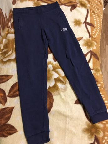 Штаны The North Face (L/XL)