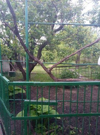 Дом Зеленый Яр 67 кв.м.