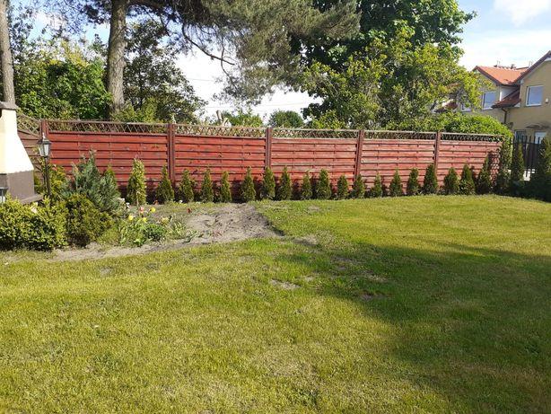 Plot pergole ogrodowe solidne 5sztuk