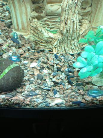 Продам грунт для аквариума