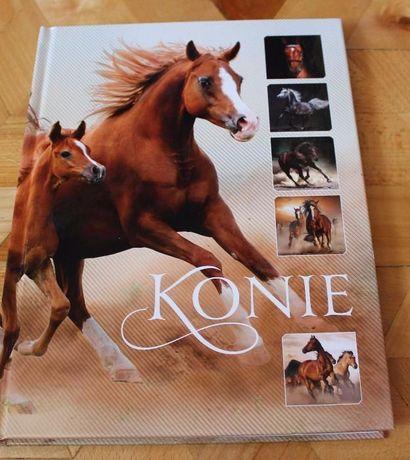Album Konie