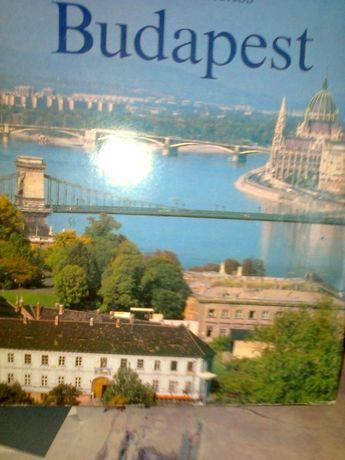 Комахи в бiосферi. Budapest