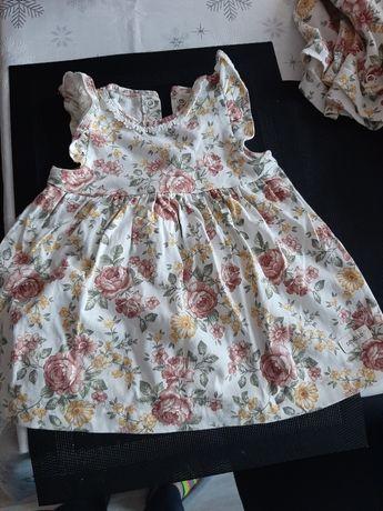 Sukienka 68 newbie