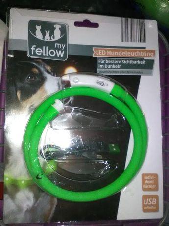 Светодиодное световое кольцо AniOne силиконовое для собаки