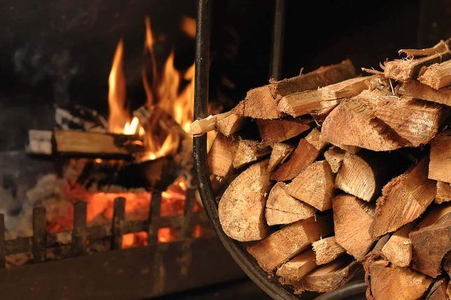 Piła- Wałcz- Trzcianka- drewno opałowe, dąb, buk, akacja, jesion