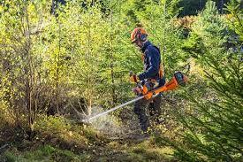 Limpeza e manutenção de terrenos, jardins e mata.