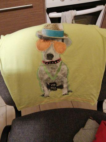 Koszulki tshirty bluza 110 -128