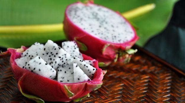 Estacas de Pitaia   Pitaya   Fruta do Dragão