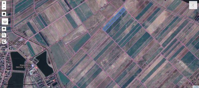 Działka rolna - łąka