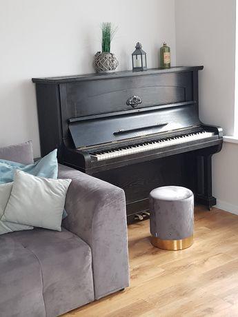 Apartament PIANO do wynajęcia w Malborku 6-osobowy noclegi CENTRUM