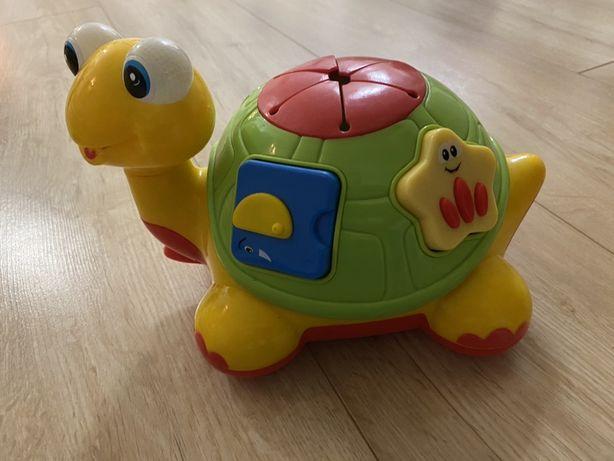 Черепаха-знайка