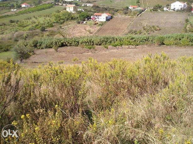 Terreno 15.000m2 Agro-Pecuária a 25Klms. de Lisboa