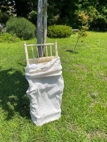 60 cadeiras em madeira e palhinha para eventos