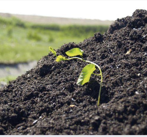 Uzdatniacz gleby - worki 5/10/15/25  kg - kompost!
