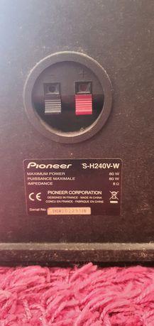 Kolumny Pioneer 80 wat
