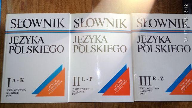 Słownik Języka Polskiego I, II, III Tom PWN