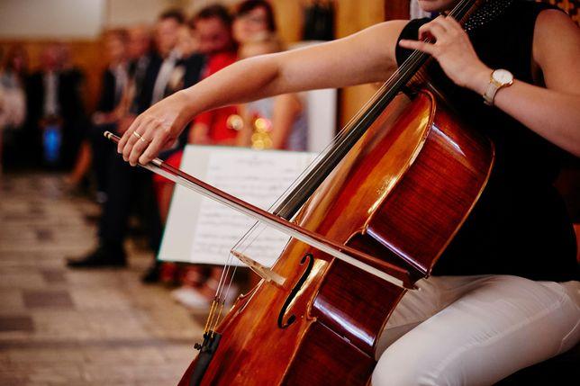 Oprawa muzyczna ślubu - wiolonczela i organy