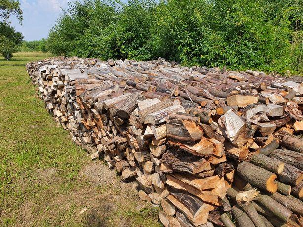 drewno drzewo kominkowe na opał