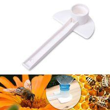 Bebedouros alimentadores para apicultura abelhas