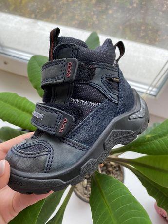 Термо ботинки на мальчика.  Ecco р22