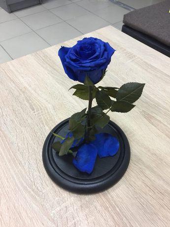 Роза в колбе+(коробка+гравировка+лепестки).Тренд 2021