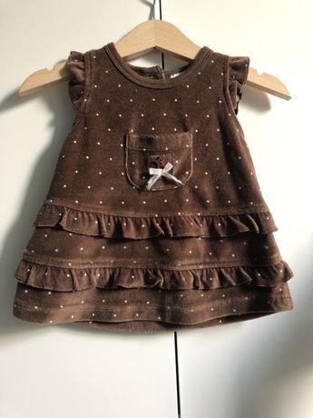 Sukienka Newbie by KappAhl