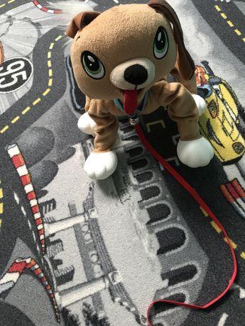 Boogie psi rozrabiaka interaktywny piesek j. nowy