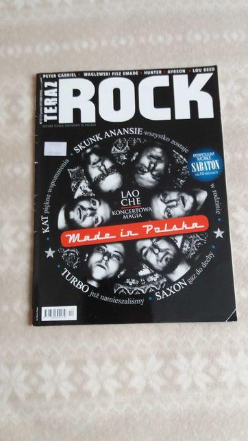 Teraz Rock magazyn muzyczny 12/2013 tanio