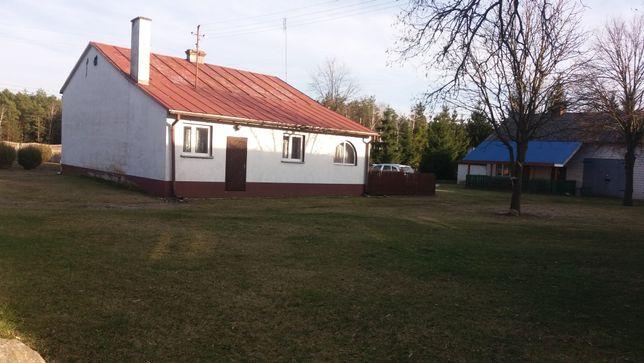 Gospodarstwo rolne, dom, garaż,las,staw