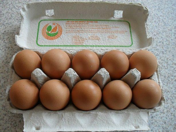 Sprzedam kurze jaja