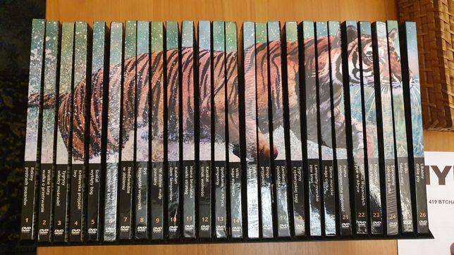 Natural Killers wielki zestaw plyt DVD 26 cześci