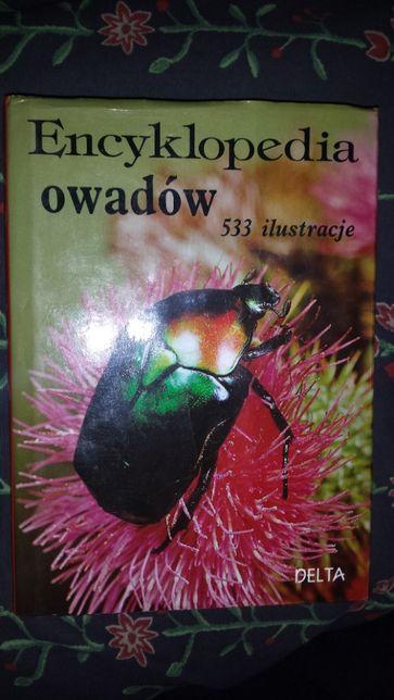 Encyklopedia owadów