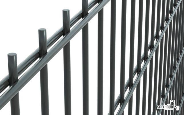 Panel ogrodzeniowy 2D 6/5/6 103 ocynk + kolor panele ogrodzenie