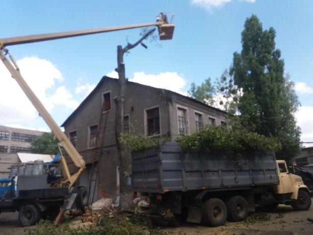 Спил деревьев любой сложности. Вывоз мусора КАМАЗ 25 куб, КРАЗ 35 куб.