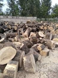Продам дрова ,клен верба,береза ,яблуня, алича,ольха