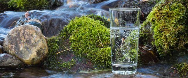Доставка горной чистой воды бесплатно.