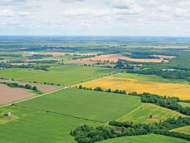 Wydzierżawię grunty rolne pod farmy fotowoltaiczne