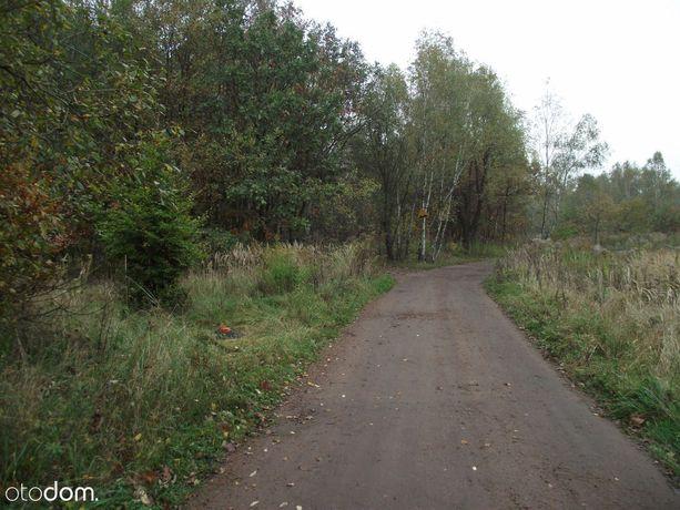 Budowlana działka obok lasu