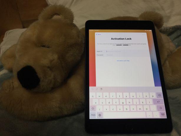 iPad mini 5 256gb wifi (icloud lock) A2133