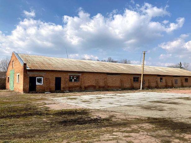 Животноводческий комплекс ферма под коровники свинарники мясокомбинат