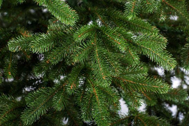 Ялинка лита ковалівська 1,80 м (зелена, голуба)